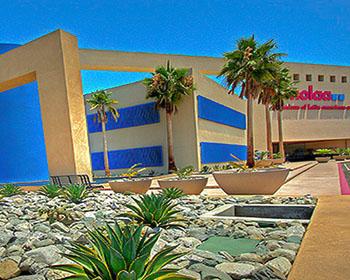 venues_museum_of_latin_american_art